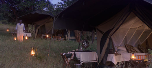 Kenya Under Canvas - A Limited Edition Small Group Journey