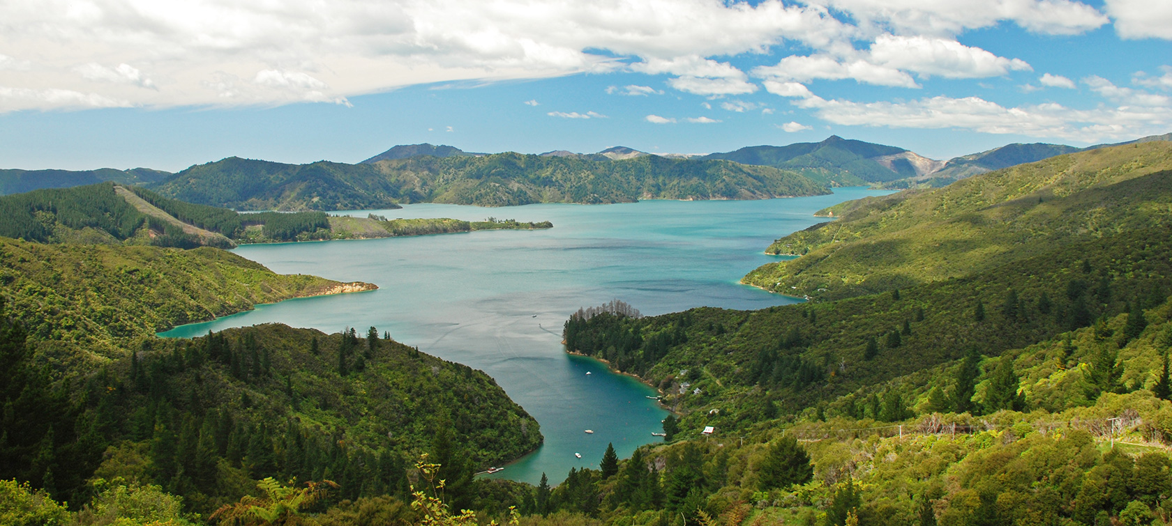 Best Of The Marlborough Sounds Australasia Amp South