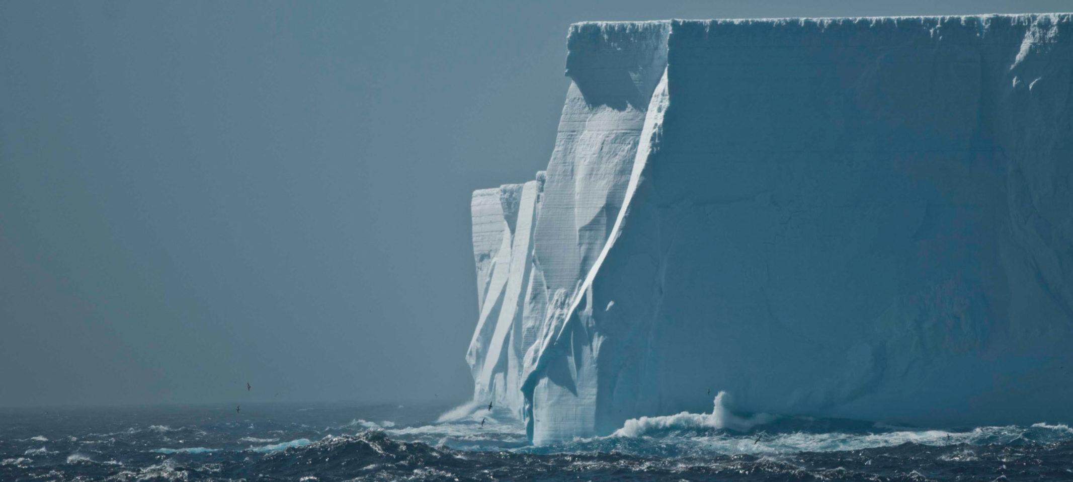 Antarctica, South Georgia & the Falkland Islands Trip Log  (12 - 28 Dec 2017)  – Friday, Dec 22 thumbnail image