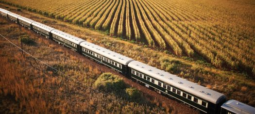 Southern Africa Safari by River & Rail - A Luxury Small Group Journey (2020)