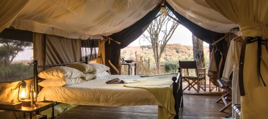 Tanzania Safari in Style - A Luxury Small Group Journey (2021)