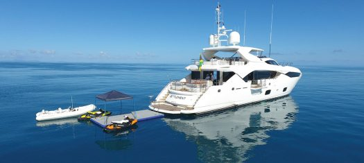 Great Reef Census Experience in the Whitsundays