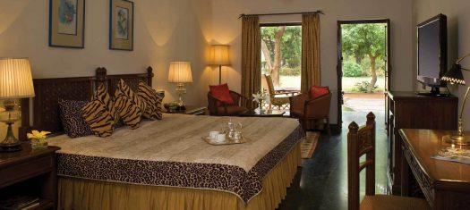 Essential India: Ranthambore National Park Post-Tour Extension