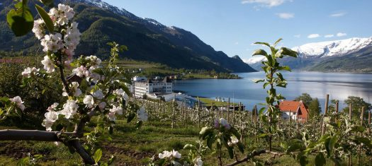 Bergen & Norway's Fjords Post - Tour Extension - A Luxury Small Group Journey (2020)
