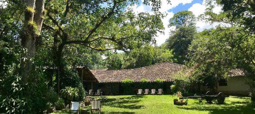 Guatemala & Copan Discovery