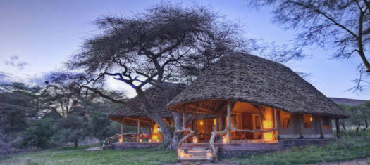 Kenya Safari in Style – A Luxury Small Group Journey